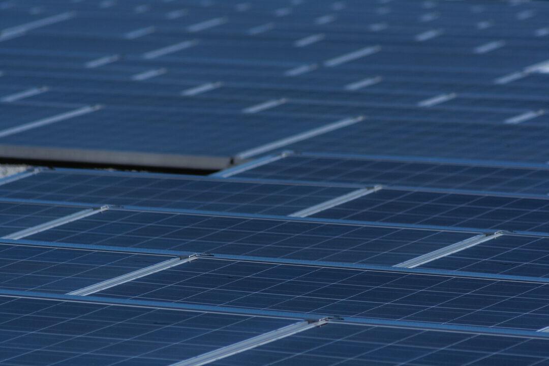 Berlex Laboratories solar panel array.